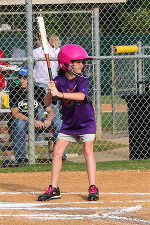 Purple Softball 2013