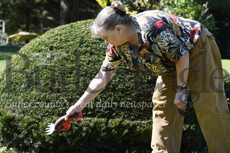 Harold Aughton/Butler Eagle: Terry Heasly clips the edge of her turtle-shaped hedge.
