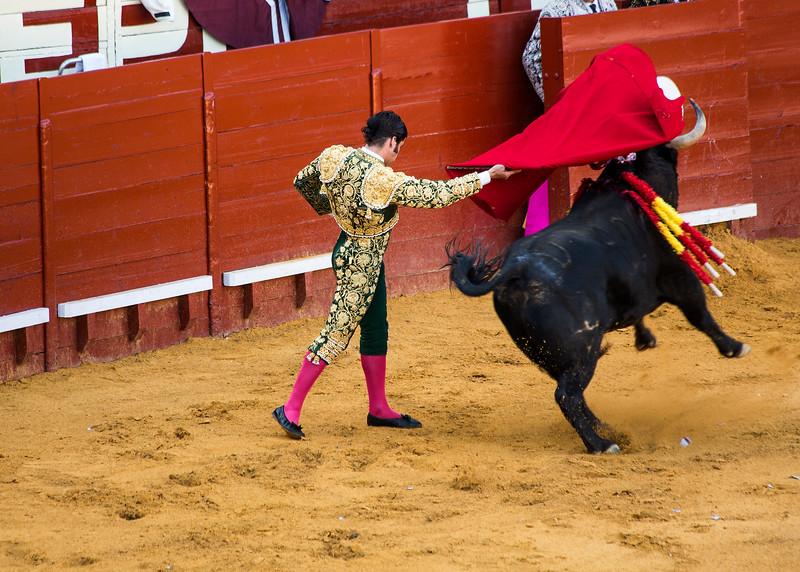 Bullfight6.jpg