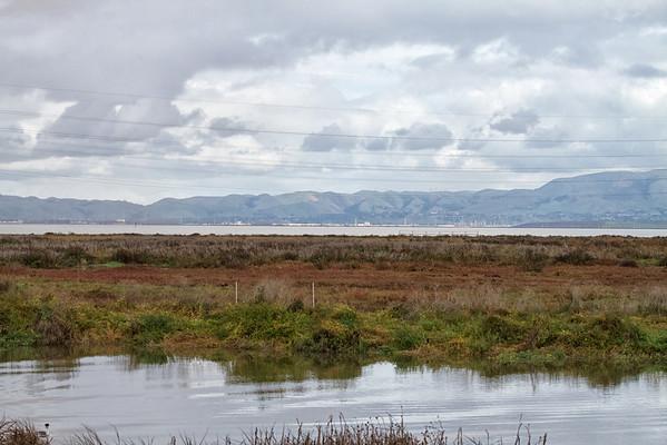 2012-12-01 Palo Alto Baylands