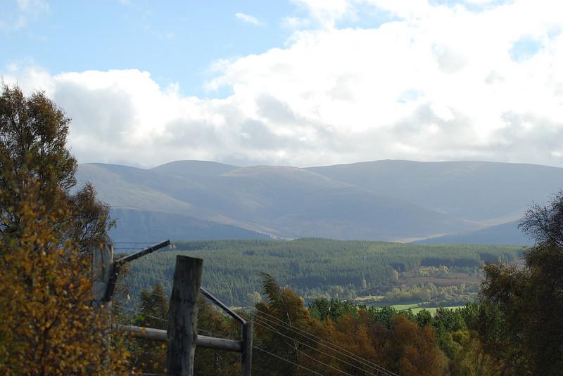 October 2010 046.jpg