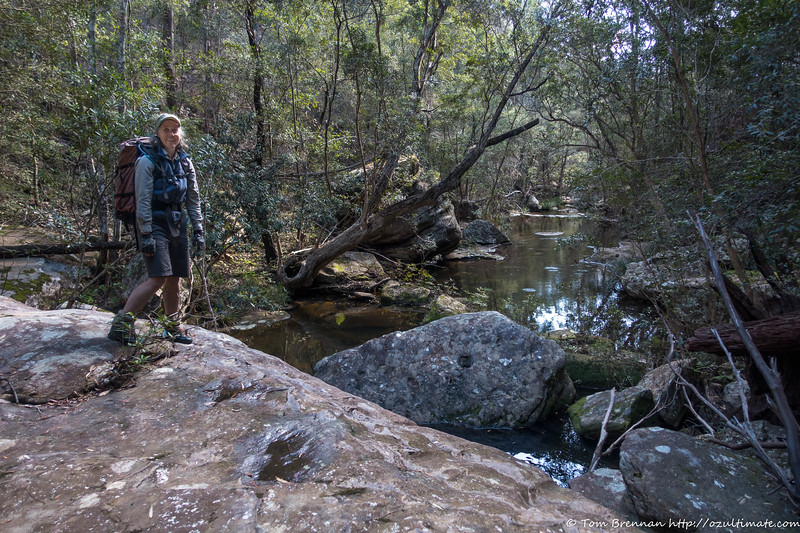 In the side creek