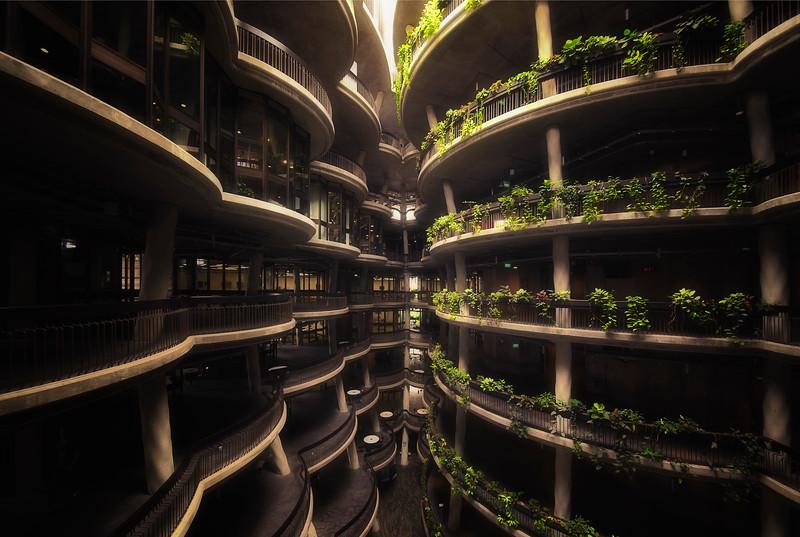 Green Corridors.jpg