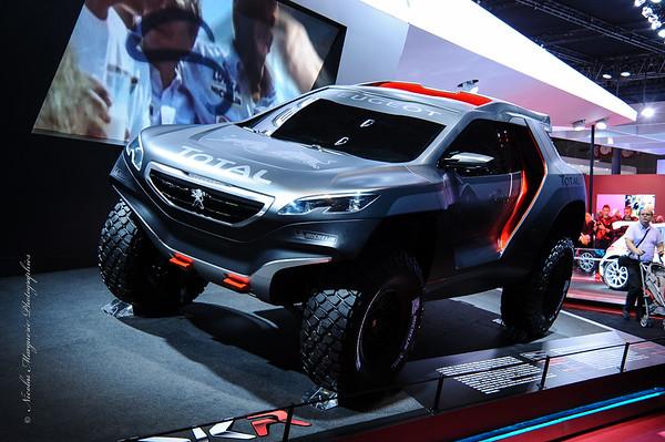 Mondial de L' Automibile 2014