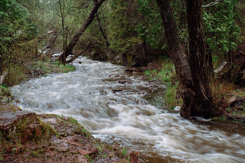 Tischer Creek 5-21-2017-1609.jpg