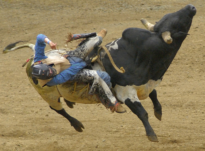 Coombs Ballarama 2008-3-105A.jpg