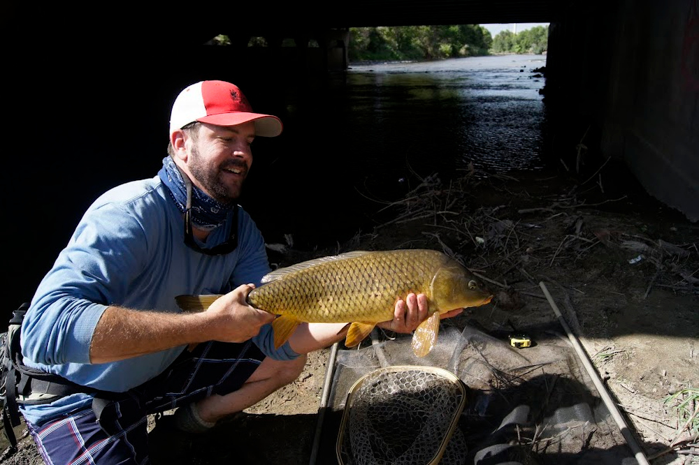 . Luke Bever pulls in a big one during the 2011 Carp Slam on the South Platte River.