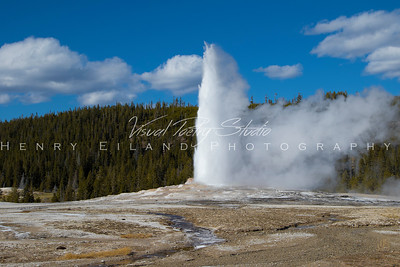 YellowStone National Park & The Grand Teton National Park