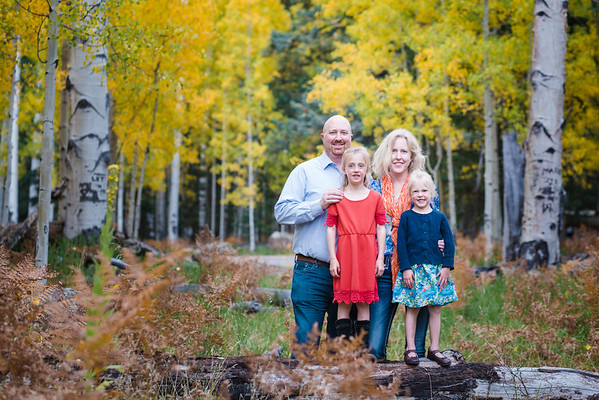 Gray Family | Aspen Corner | Family Mini session