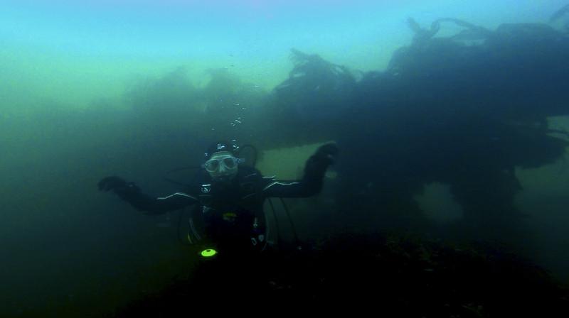 Devon-Underwater-10.jpg