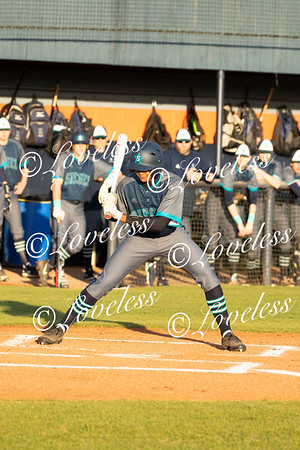 Baseball vs Blackman 3/11/19