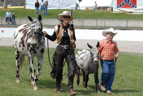 2006 Mini Mule Show