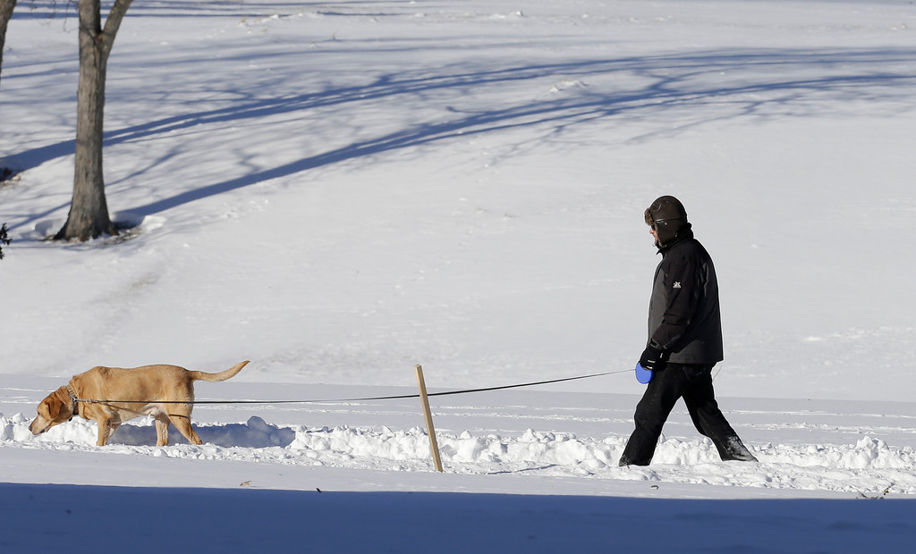 . A man walks with his dog at the Cleveland MetroParks Acacia Reservation Thursday, Jan. 30, 2014, in Lyndhurst, Ohio. Temperatures should rise to the mid 20\'s by Thursday afternoon. (AP Photo)