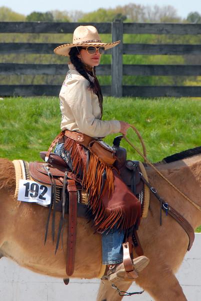 2015 Riding Mule Show