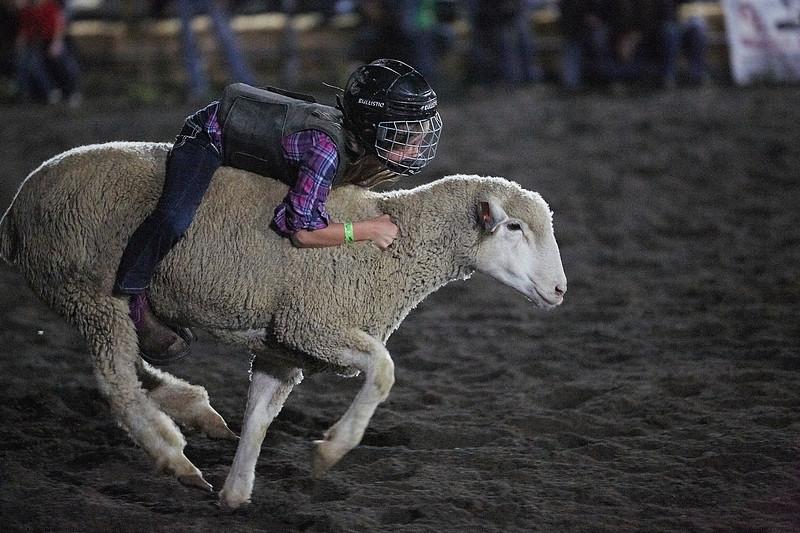 Enumclaw Rodeo 2019 - _15A5727.jpg