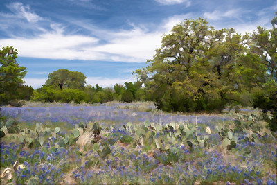 TX-Texas Hill Country
