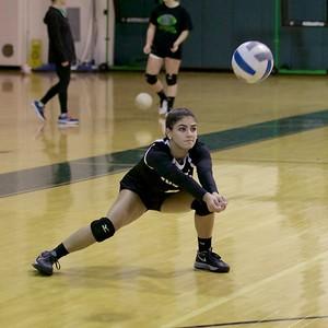 2018 - Ridge Girls' Volleyball