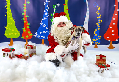 Kelsey Davis - Pet Pics with Santa