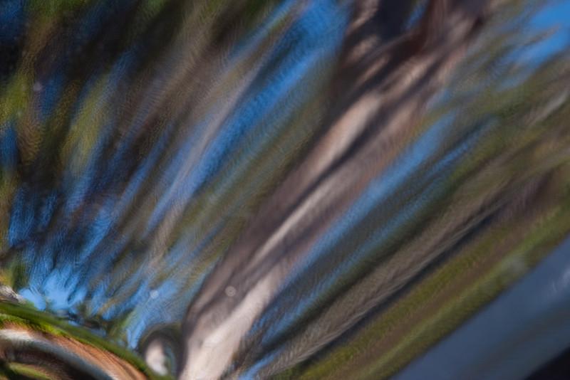 294_Miksang_20110129.jpg