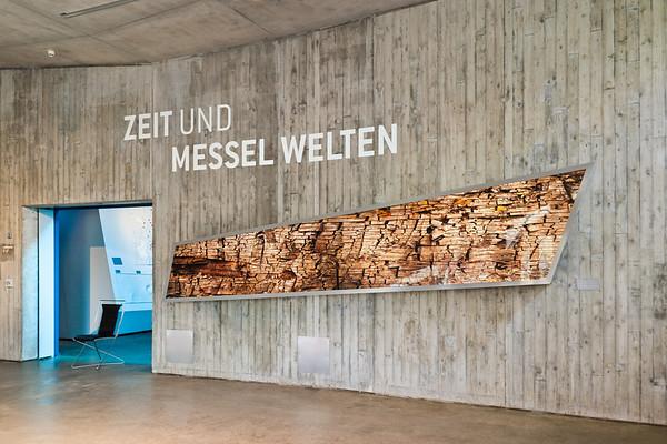 101026 Besucherzentrum Grube Messel
