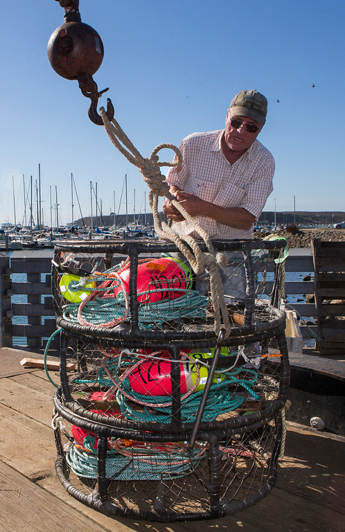 ". Fisherman Dutch Freeman loads crab pots onto the ""Cricket\"" at Pillar Point Harbor. (John Green/Bay Area News Group)"