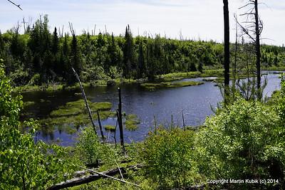 Kekekabic Trail June 2014