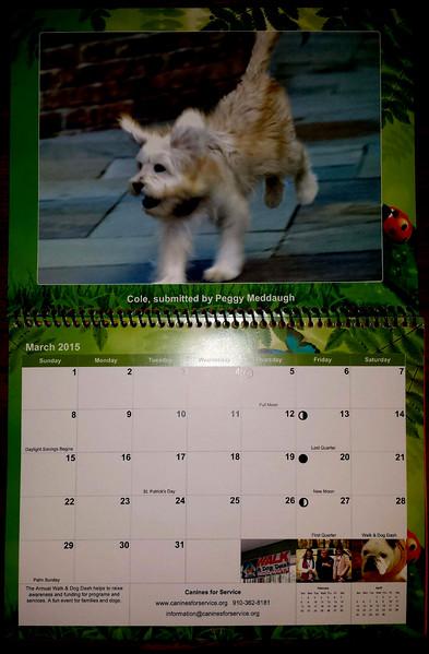 Coal Calendar.jpg