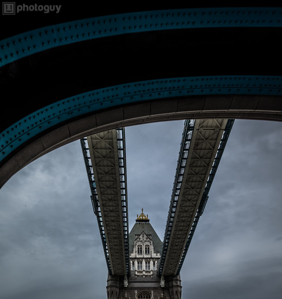 20140728_LION_LONDON (12 of 48)