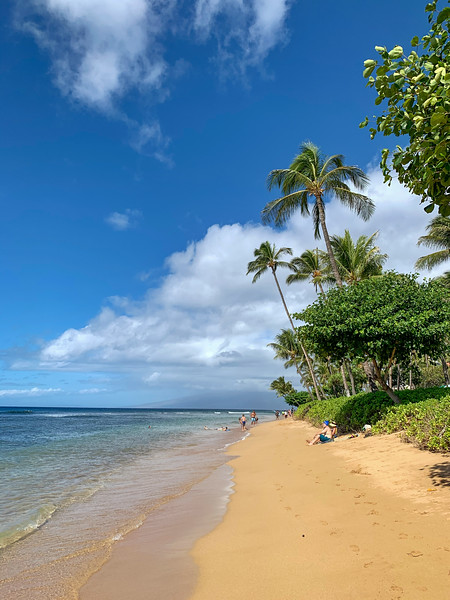Hawaii 2019-27.jpg