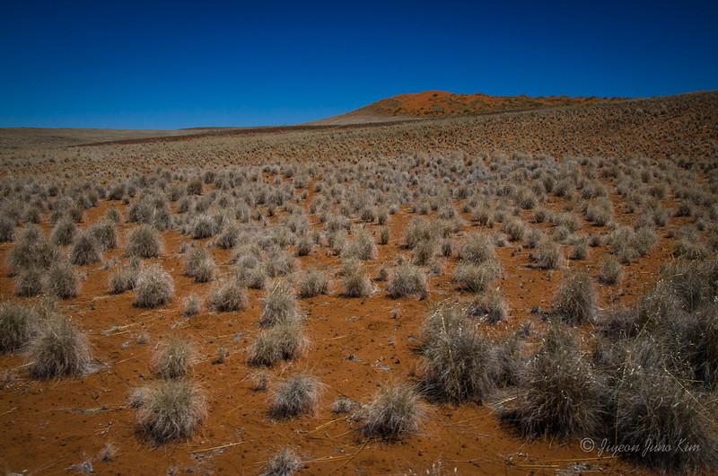 Namibia-4059.jpg