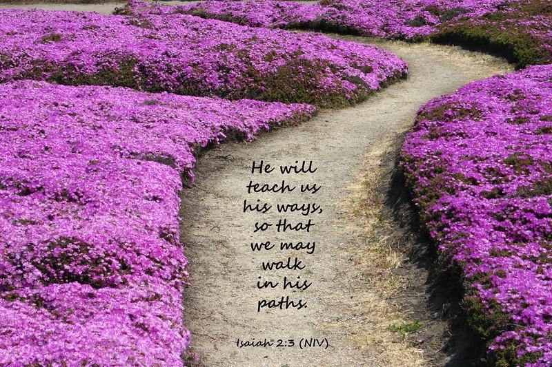 23_Isaiah2-3_KH_2008-4-24.jpg