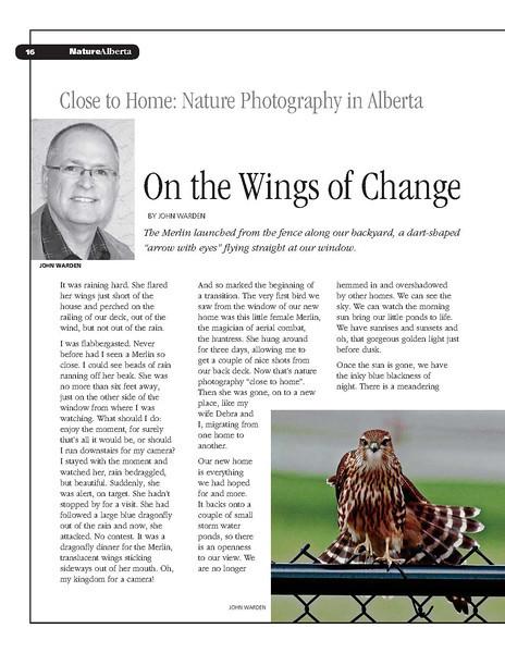 Wings of Change _1.jpg