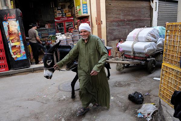Cairo Egypt Plus