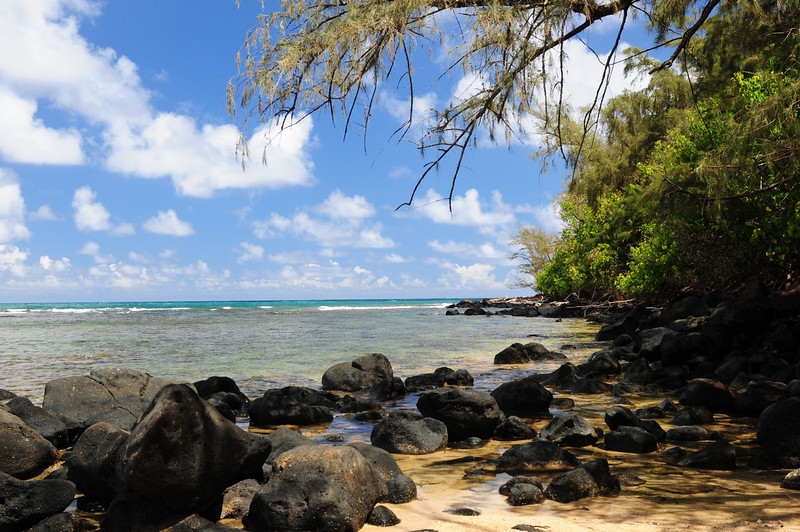 2012_Kauai_Hawaii_August_  0005.JPG