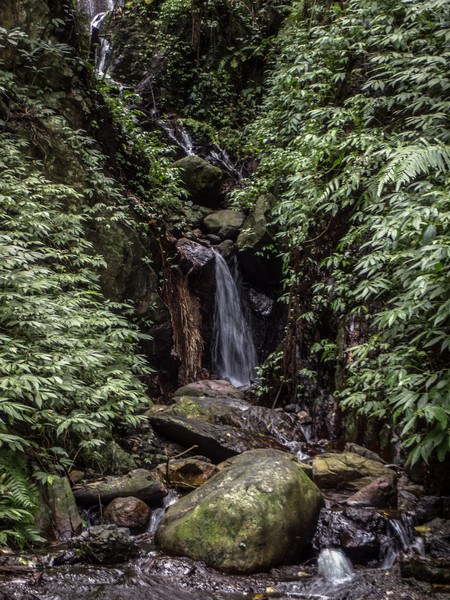 Cascade in Hui-sun forest station