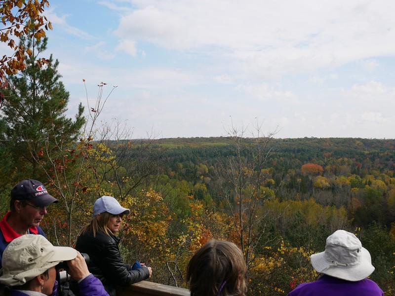 Observation platform at Fleetwood Creek Natural Area