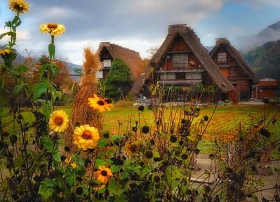 The Gassho Villages of Gokayama