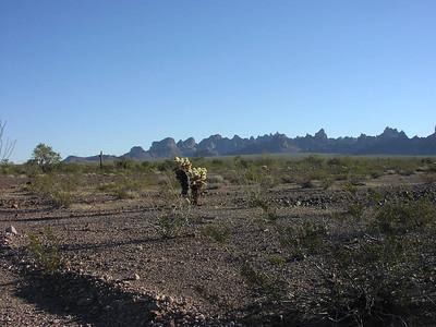 01-10-2004 to Arizona with Shera