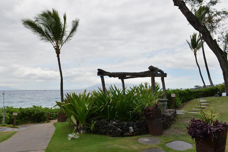 Maui - Hawaii - May 2013 - 4.jpg