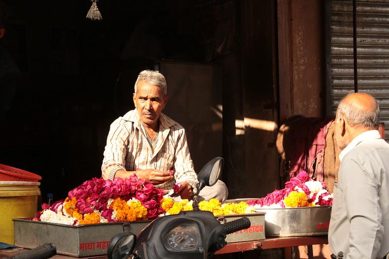 INDIA - 738.jpg