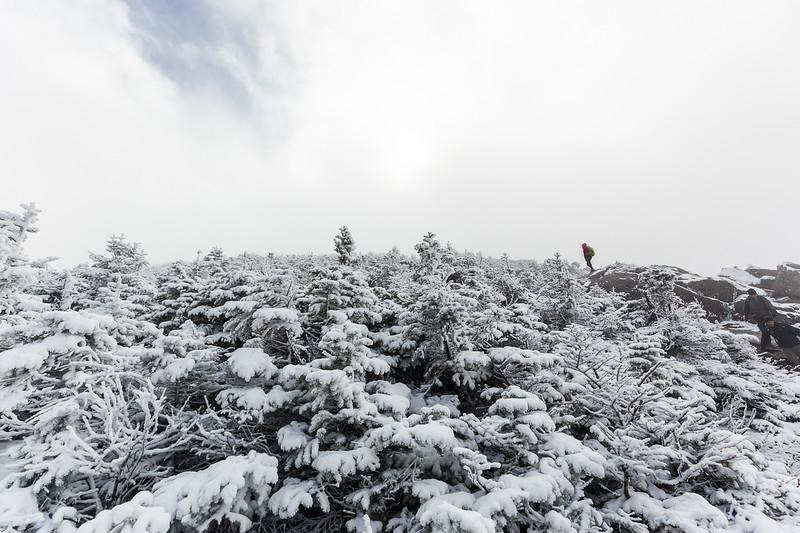 2018-10-13et14 Mont Algonquin0018.jpg