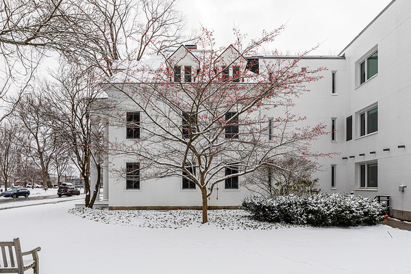 Hawthorne Tree Blunt Center