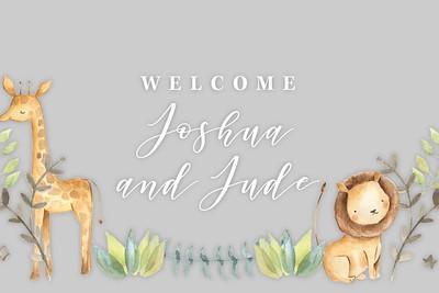Joshua & Jude (individuals)