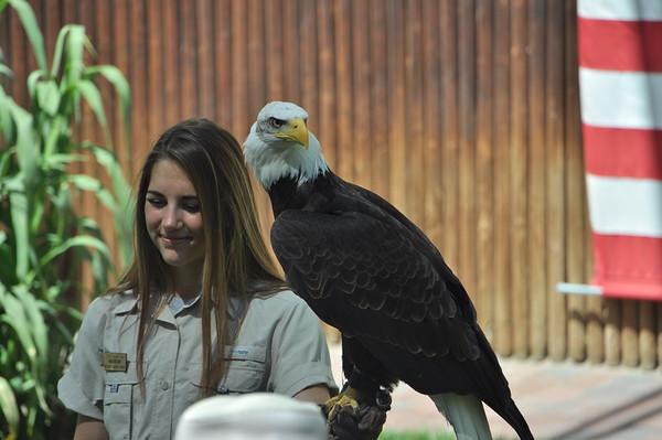 2016, Hogle Zoo