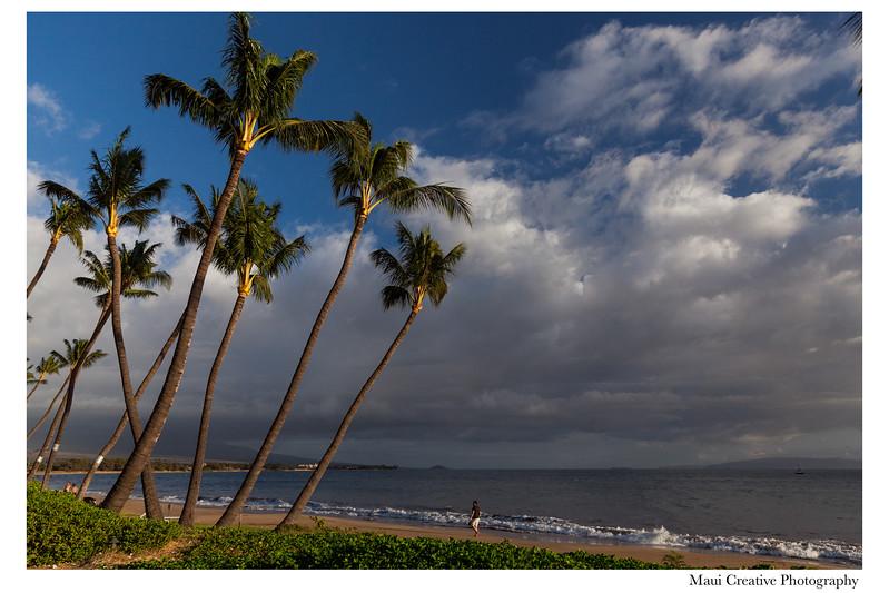Maui-Creative-Destination-Wedding-0187.jpg