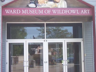 9/08/16 Ward Museum of Wildfowl - Salisbury, MD