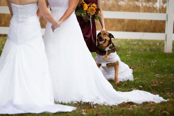 Baltimore Bride Images