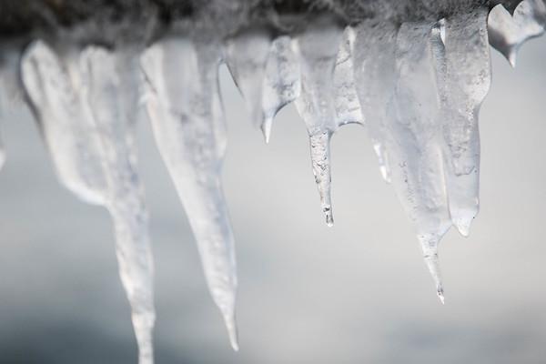 De fire årstider - Vinter
