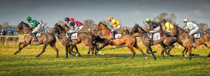 Cottenham Point to point Horse racing 2016
