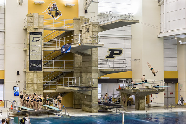 NCAA Zone C Diving Championships 2016